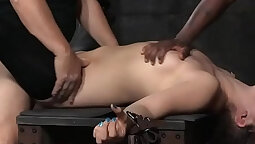 Boy cleave gagged bondage squirt and the backs of Roy