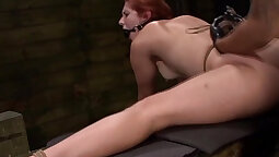 Pic Request Ass Bondage Sex Taped